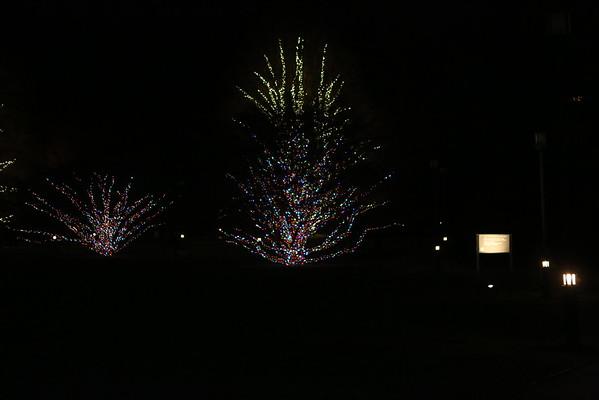 Longwood Garedens 12-21-2014